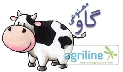 گاو مصنوعی با قابلیت تولید شیر